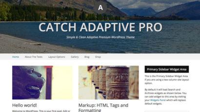 catch adaptive pro